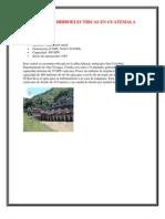 CENTRALES HIDROELECTRICAS EN GUATEMALA.docx