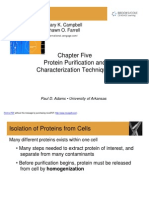 --Chapter 5 - Protein Purification and Characterization Techniques (1) [Compatibility Mode]