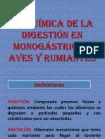 bioquímica de la dogestión en rumiantes, aves y monogástricos