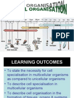 2.1 Cell Organisation