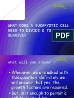 DNA2life_What Does a Cell Need to Divide &Survive