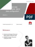 MSOFTX3000 BICC Data Configuration 20090227 B 1 0