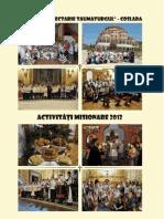 Activităţi misionare 2012