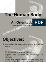Ana&Physio 1 - The Human Body - An Orientation