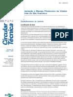 Implantação e Manejo Fitotécnico da Videira.pdf