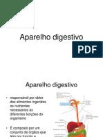Aula 16- Aparelho Digestivo