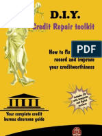 DIY Credit Repair Preview