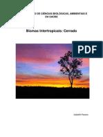 CERRADO.pdf 2013.pdf