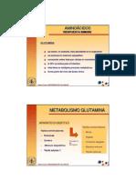 20-aminoacidos (metabolismo glutamina).pdf