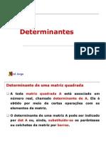 2 ANO - Determinantes - 2008