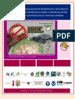 Informe taller socialización nicaragua