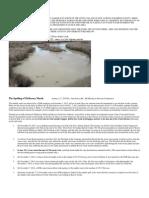 McKeesey Marsh and Beaver Creek Handout