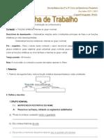 301ticas++Internas+Ao+Grupo+Nominal