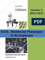 Cours Membrane Plasmique & Hyaloplasme Microsoft Office Word