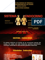 Sistema Endocrino Nancy
