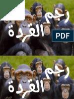 رجم القردة