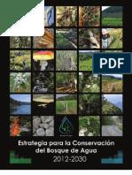 Estrategia Bosque de Agua Prefinal