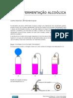 02 Ferm Alcoolica Montagem Fermentador