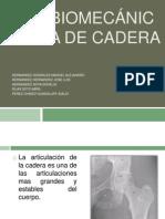 1. Biomecanica de Caderra