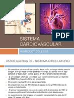 37299635 Sistema Cardiovascular