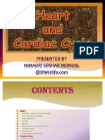 DNA2life_Heart and Cardiac Cycle