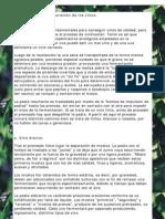TIPOS DE VINOS.pdf