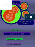 food_and_digestion_bw.ppt