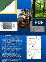 Ecofiziologie- Curs 3