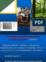 Ecofiziologie Curs 5