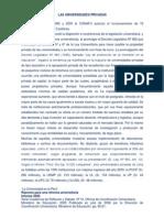 LAS UNIVERSIDADES PRIVADAS.docx