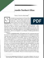 Lembrando Norbert Elias