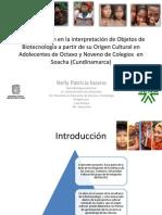 Caracterización en la interpretación de Objetos de Biotecnología