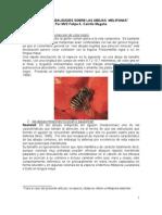 Artículo_Mitos y Realidades en Meliponicultura