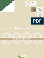 GSE Rapporto Biomasse Feb 2011