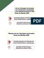 Guias de Manejo Consenso2009