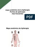 49618216 Mapa Anatomico de La Apiterapia