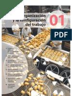 Organizacion y Configuracion de Trabajo