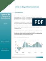 Informe de coyuntura económica  ENERO 2013