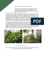 2 2 Fertilización y mantenimiento zonas verdes