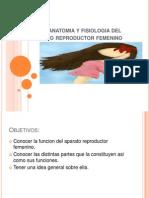 AP.reproductor Femenino