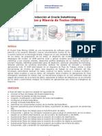 Brochure Taller de Inducción al Oracle DataMining Minería de Datos (DM048)