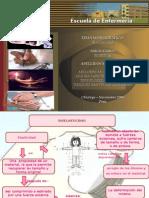 Diapositivas  de Biofisica