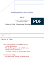 Modelling Biological Oscillations