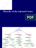Disorder of the Adrenal Cortex (MKEB2404)