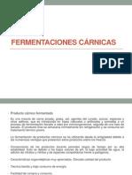 FERMENTACIONES CARNICAS