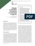 01.119 Patología pancreática hereditaria y estructural congénita