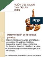 EVALUACIÓN DEL VALOR NUTRITIVO DE LAS PROTEÍNAS