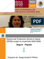 Presentación de CAUSES 2010