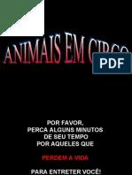 Animais Circos[1]