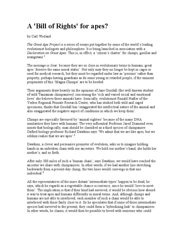 essay on bill of rights for animals  mistyhamel